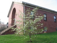 Meetinghouse in the spring